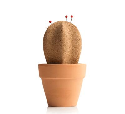 cactus4