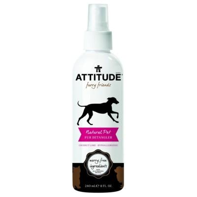 attitude-anti-klit