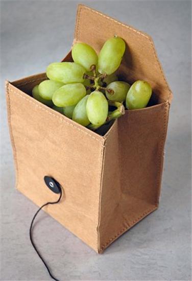 luchbag fruit