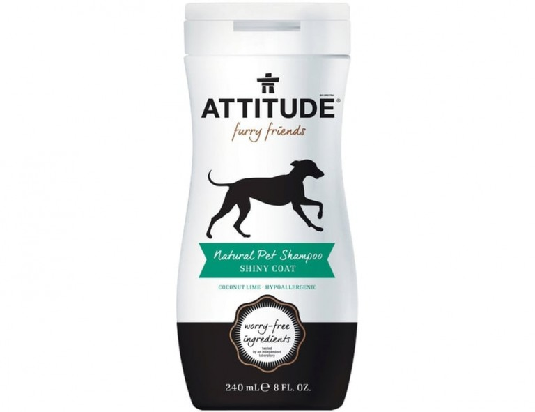 attitude-furry-shiny-coat